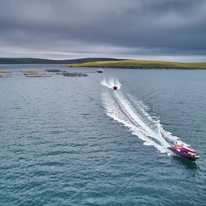 Two ribs travelling at speed in Shetland